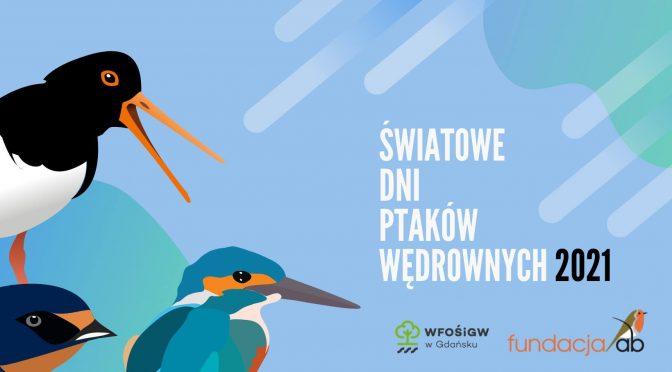 Światowe Dni Ptaków Wędrownych 2021